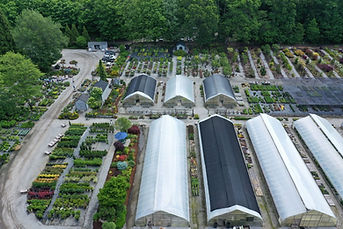 Overview of the Nursery #28.JPG