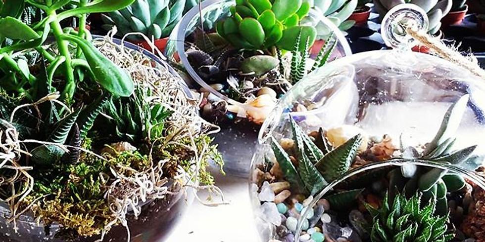 Garden In A Glass Terrarium Workshop