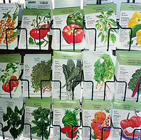 Botanical Seed 2_26_21