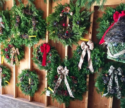Decorated Balsam Wreaths