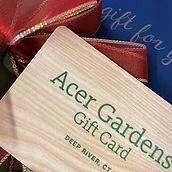 Acer Gift Card.jpg
