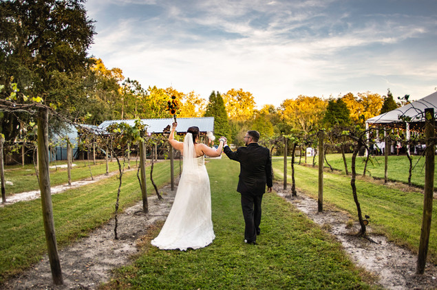 Wedding Photography www.timelesstampa.com Keel and Curley Winery