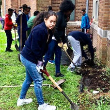 Middle School Planting