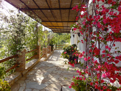 Moroccan-Terrace.jpg