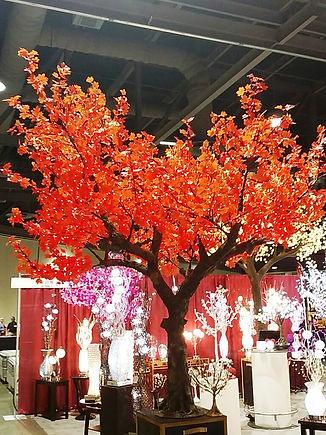 12 foot Maple red maple NBL-350.jpg