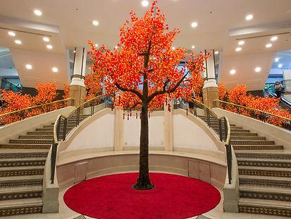 630 Red Maple, Warm White lights.jpg