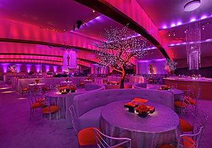 PinkRed LED lighting.JPG
