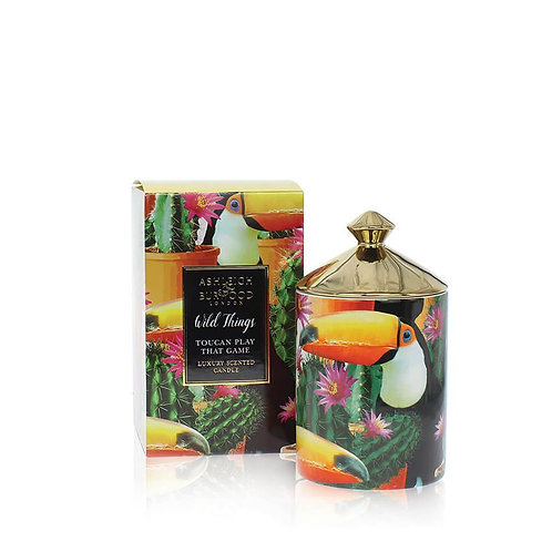 Bougie Wild Things - Toucan