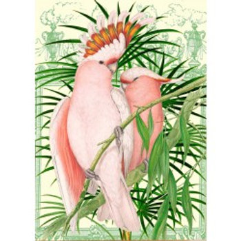 Carte -Whimsical (pink parrot)