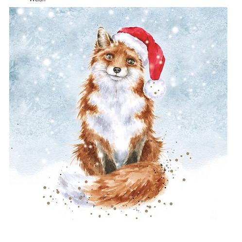 Set de cartes de Noël - Fox
