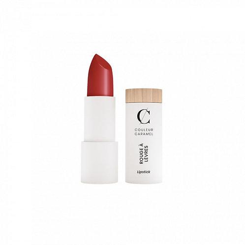 Rouge à lèvres MAT - 120 ROUGE SOMBRE