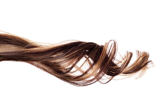 piece of brown hair on white isolated ba