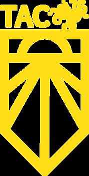 Tacoma_Yellow.png