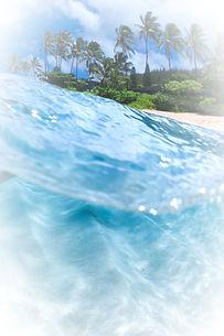 maui-ocean-wave_edited.jpg