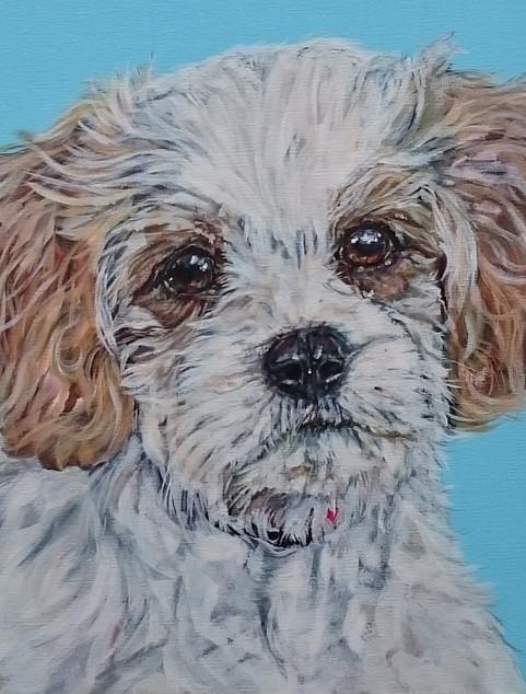 Tom commissioned by K.Bradley December 2015