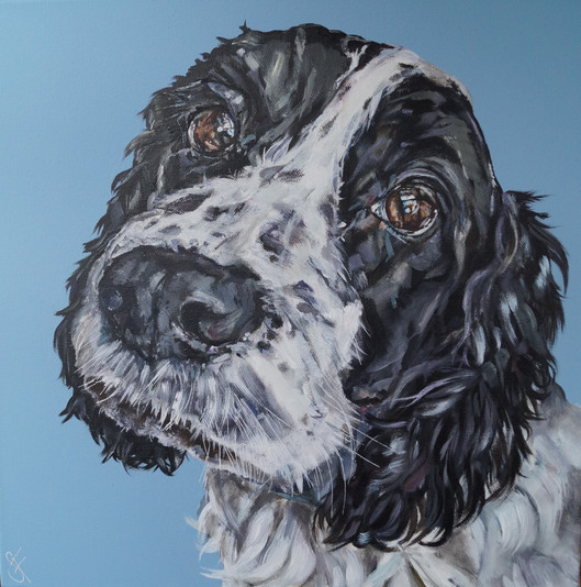 Bertie commissioned by P.Shearman April 2017