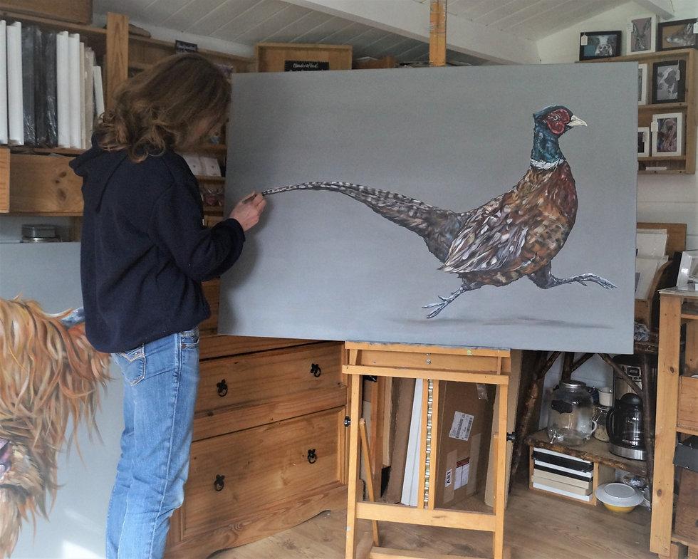 Pheasant wip2.jpg