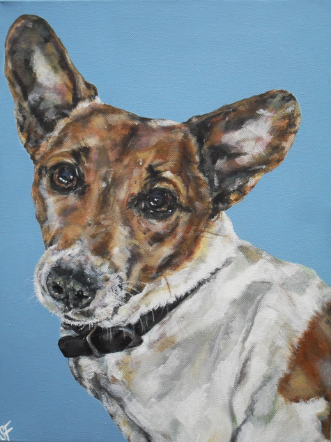 Molly commissioned by C.Morris July 2013