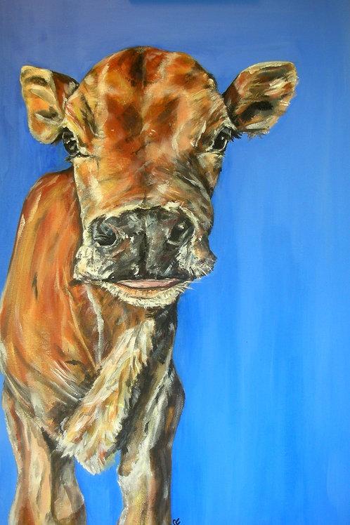 Mini Moo Cow