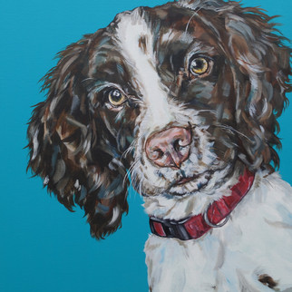 Alfie commissioned by MQ, Malvern, February 2021