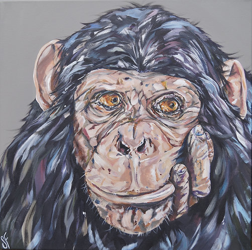 I Don't Give A Monkey's