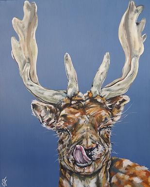 Cheeky Deer.jpg