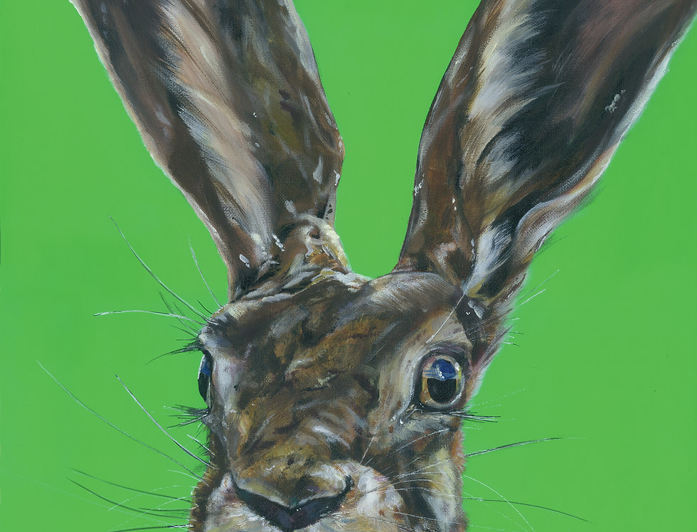 Mad Hare Day
