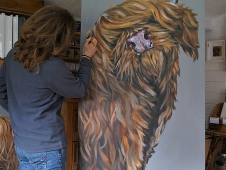 Another huge hairy highland is appearing on my canvas ... just got to think of a name ... ?