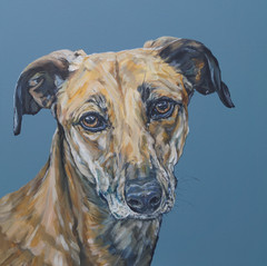 Jake commissioned by RF, Worcs, March 2021
