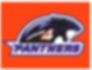 DG-Division4-Panther-Logo.png