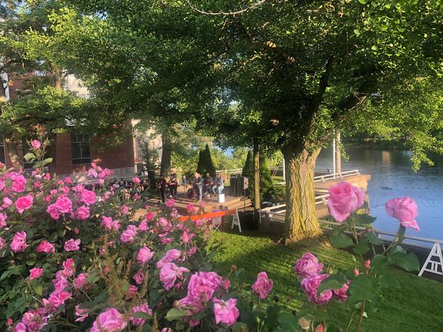 Music in the Park (Warren)