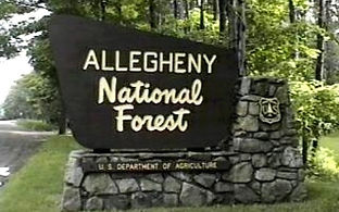 Allegheny National Forest.jpg