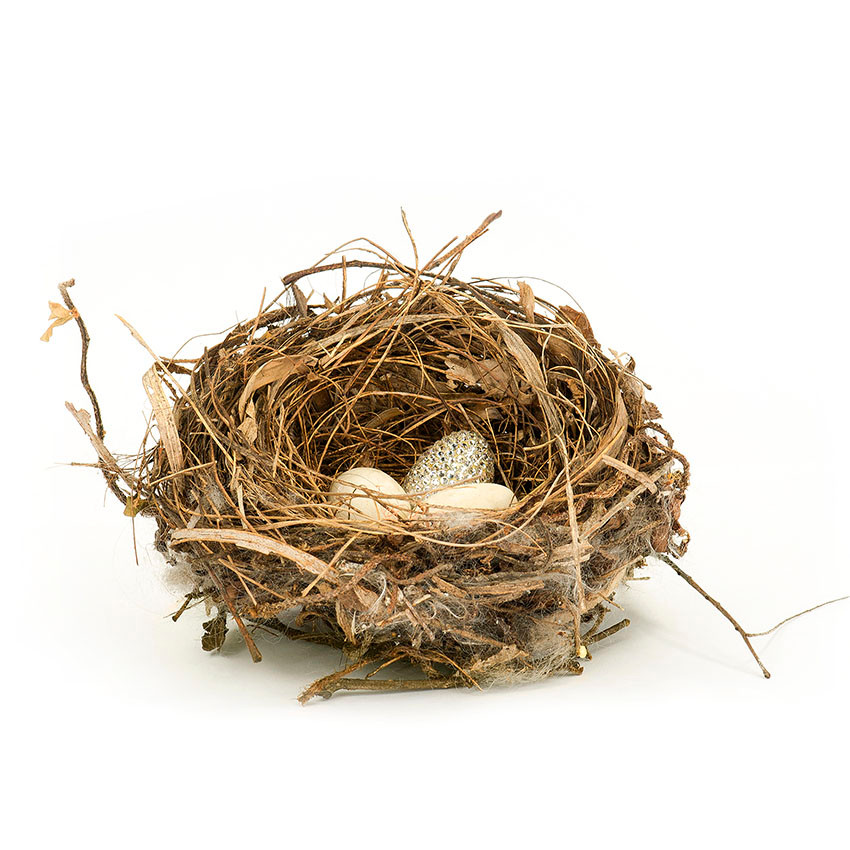 """Nests Series"""
