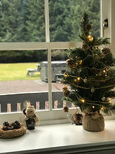 Christmas at Laghlasser Cairngorms.jpg