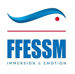 ffessm logo.png