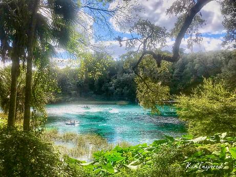 Rainbow Springs.png