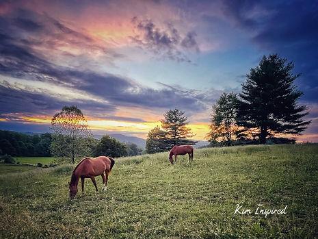 Eveningtide with Horses.jpg