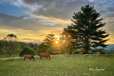 Eveningtide with Horses 2.jpg