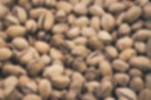 pistacchio proprietà benefiche
