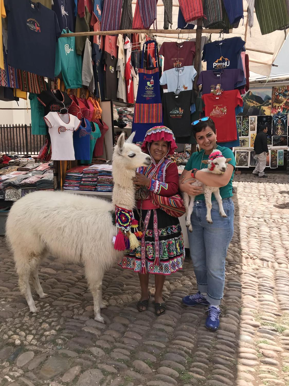 Alpaca baby - Pisac, Peru