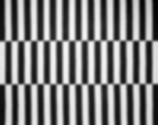 Tapete-200-Cm-X-250-Cm-Preto-branco-Zebr