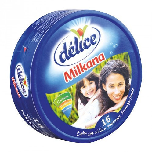 Fromage delice MILKANA 16 PORTIONS