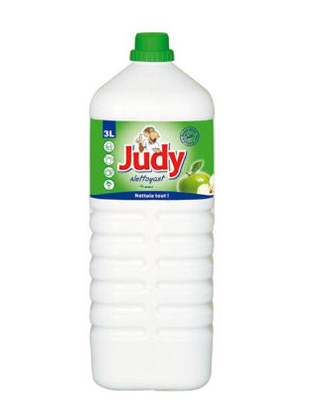 Nettoyant Judy Pomme 1.5L