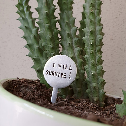 Mini Plant Stakes - I will survive! / For succs sake / Water me Combo