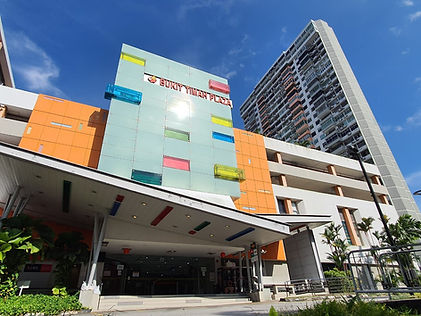 Bukit Timah Plaza- SRI.jpeg