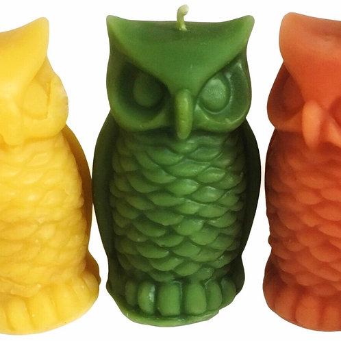 Night Owls Plotting