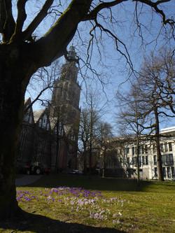 Martinikerkhof met toren