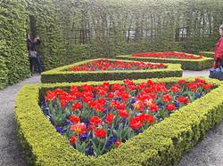 tulpen in prinsentuin (2)_edited