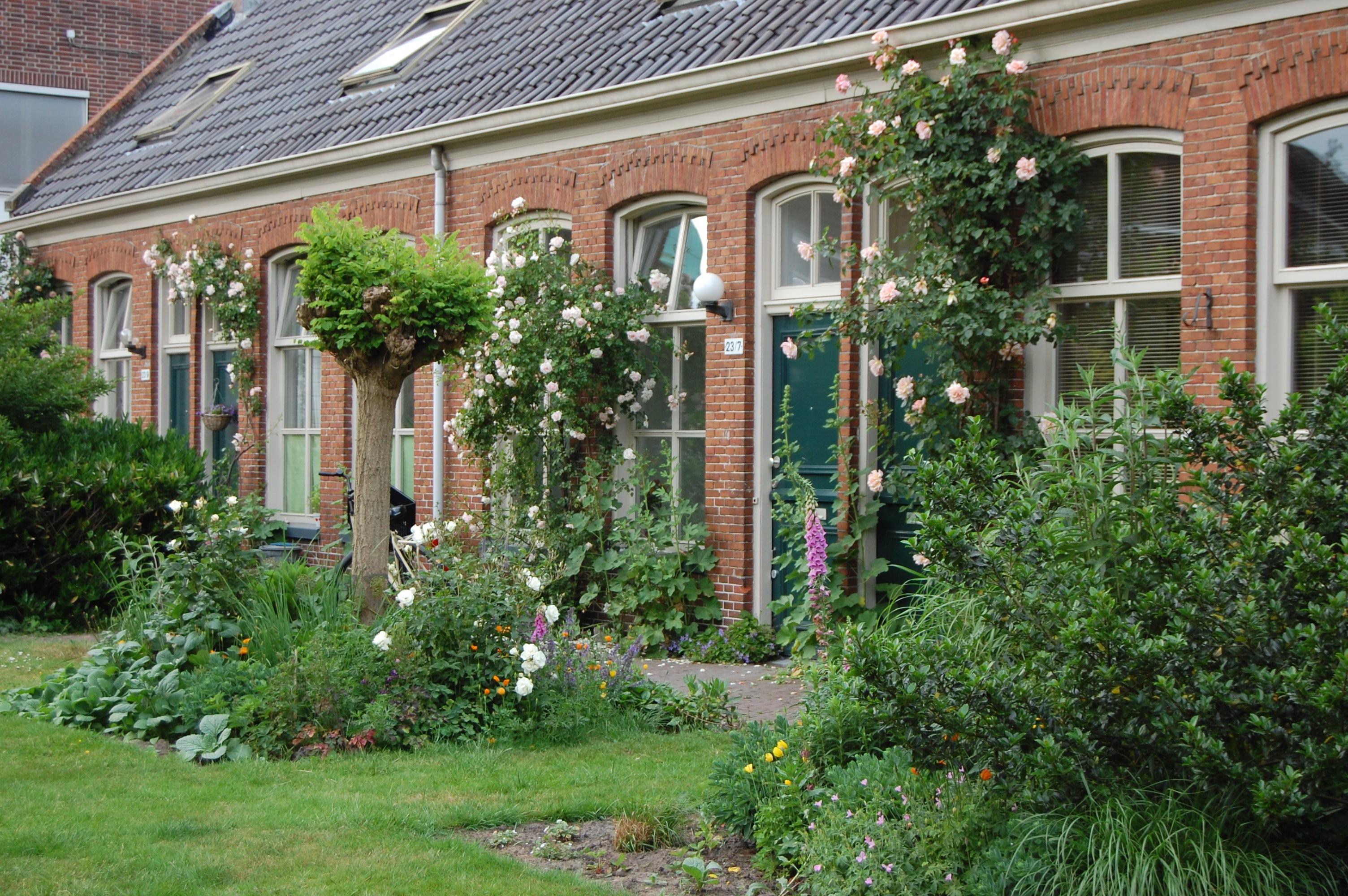 bloemenpracht Martinusgasthuis