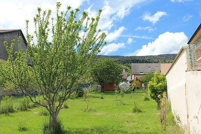 Verger fruitier jardinerie Artisan Jura - Plantedegraine